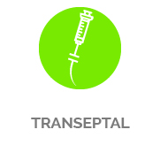 Transeptal